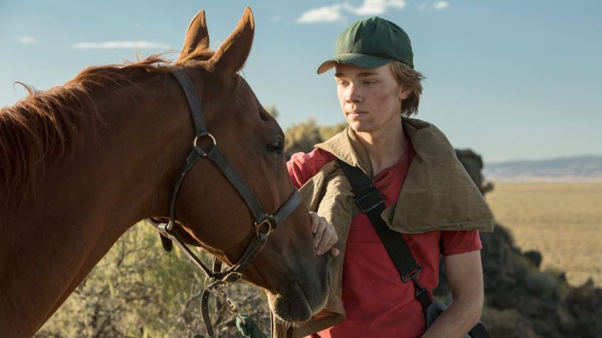 DVD review: Lean on Pete