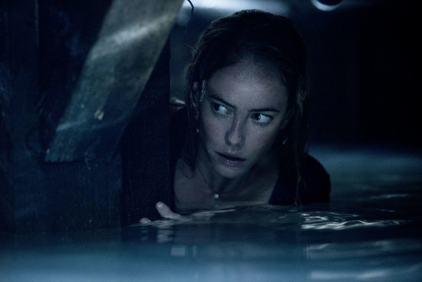 Film review: Crawl